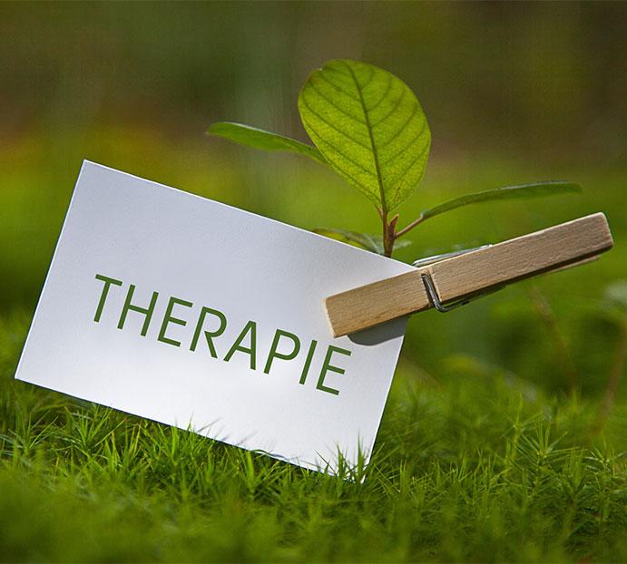 Verknüpfung von Psychotherapie und Homöopathie